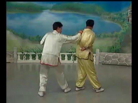 Arm lock. Kung Fu.Chin Na Tiger Style 1 洪家 擒拿