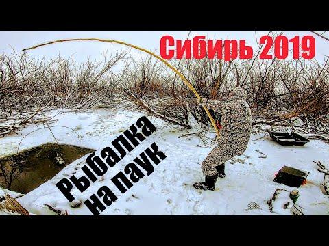 Тонны рыбы в НАНО ручье ЧАСТЬ 2! Рыбалка на паук зимой .Подводные съемки рыбалки .Рыбалка зимой 2020