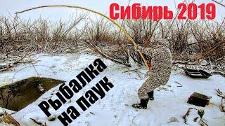 Тонны рыбы в НАНО ручье ЧАСТЬ 2 Рыбалка на паук зимой Подводные съемки рыбалки Рыбалка зимой 2020