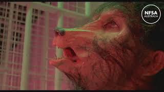 werewolf transformation wtf