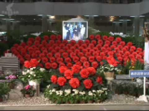 Kimjongilia Exhibition