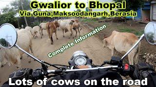 Gwalior to Bhopal via Guna,Janjali,Jamner Maksoodangarh,Berasia. Complete road information