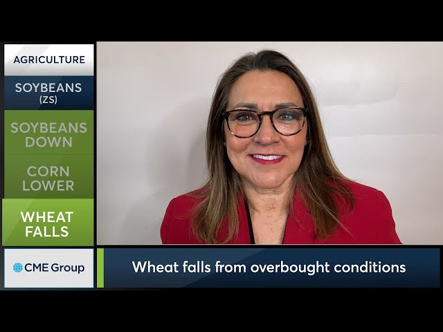 March 1 Grains Commentary: Virginia McGathey