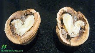 Vlašské ořechy a funkce arterií