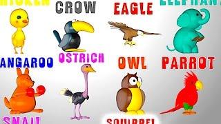 Английский язык для детей, учим животных и цвета