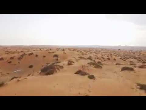 Sand mining in abu dhabi...