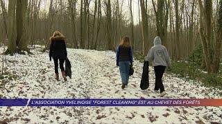 Yvelines | L'association yvelinoise Forest Cleaning est au chevet des forêts