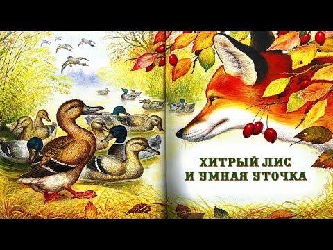 Мультфильм хитрый лис и умная уточка смотреть