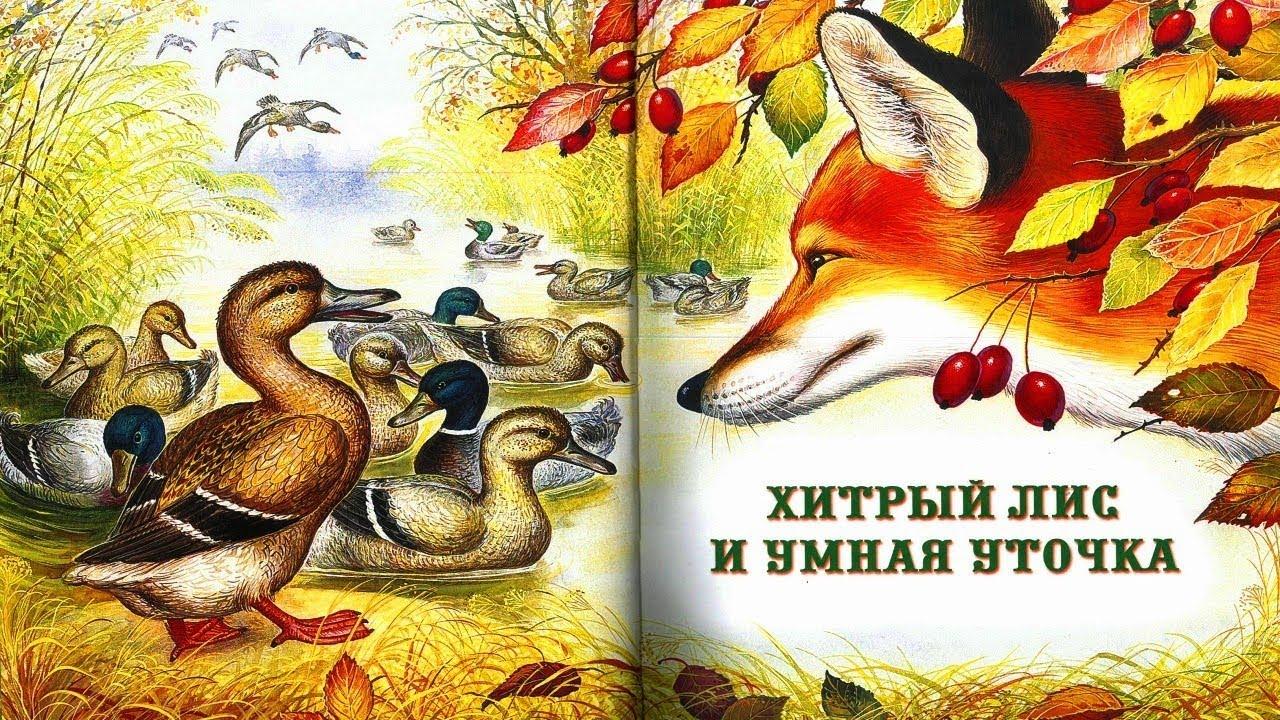 ХИТРЫЙ ЛИС И УМНАЯ УТОЧКА .В.Бианки аудио сказка ...