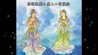 佛說觀藥王藥上二菩薩經 (粤语) The King Of Medicine u0026 The Superior Physician Bodhisattvas Visualisation Sutra