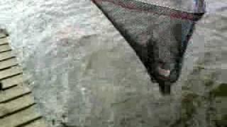 Видео0009(, 2010-06-10T23:16:29.000Z)