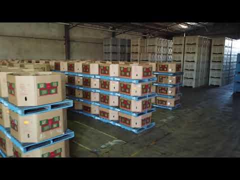 Tonys farm produce