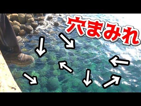海中にある穴にエサを入れて魚を釣る!