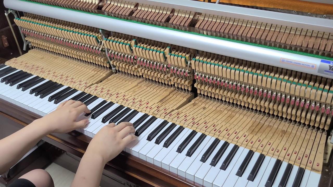 자작곡 - 피아노의 여름