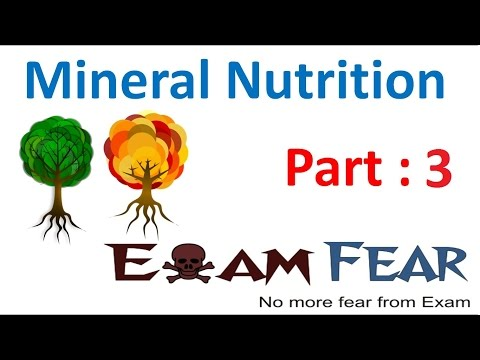 Biology Mineral Nutrition part 3 (Essential & Non essential Minerals) CBSE class 11 XI