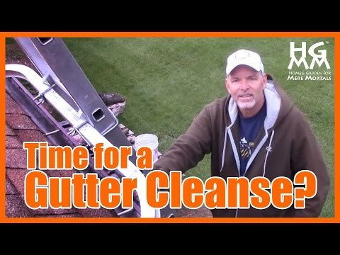 How to Clean Your Gutters