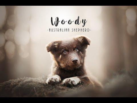 WOODY-New Family Member
