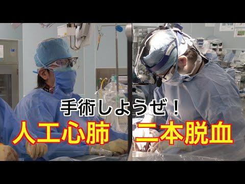 【心臓手術】 フル動画解説付き 人工心肺確立 二本脱血 カニュレーション 【手術しようぜ!】 Cardioplumonary Bypass With Bicaval Cunnulation