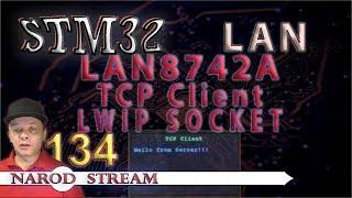 Программирование МК STM32. Урок 134. LAN8742A. LWIP. SOCKET. TCP Client