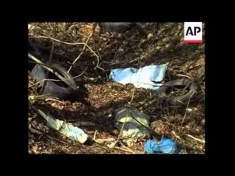 AP cover from site of Kaczynski plane crash, eyewitness reax