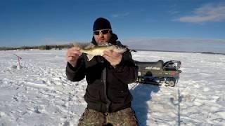 (PCH-75) Pêche sur glace - Abitibi (2018)