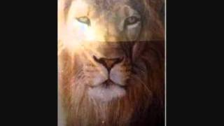 DJ 4REAL THE LION AWAKES.