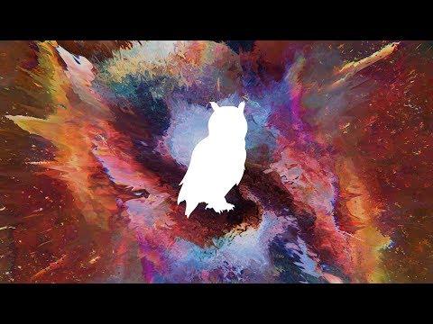 Vindata + Skrillex + NSTASIA - Favor (Maazel Remix)