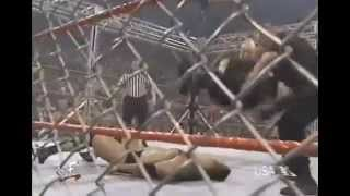 WWE Steel Cage The Rock Vs Big Boss Man And Bull Buchanan Highlights 1080p HD