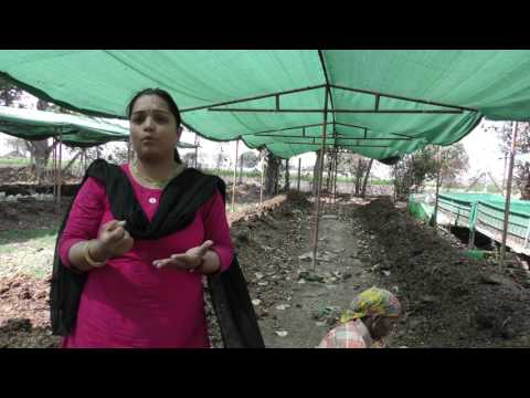 Our Organic Hero: Green Heroes Film Festival - TERI