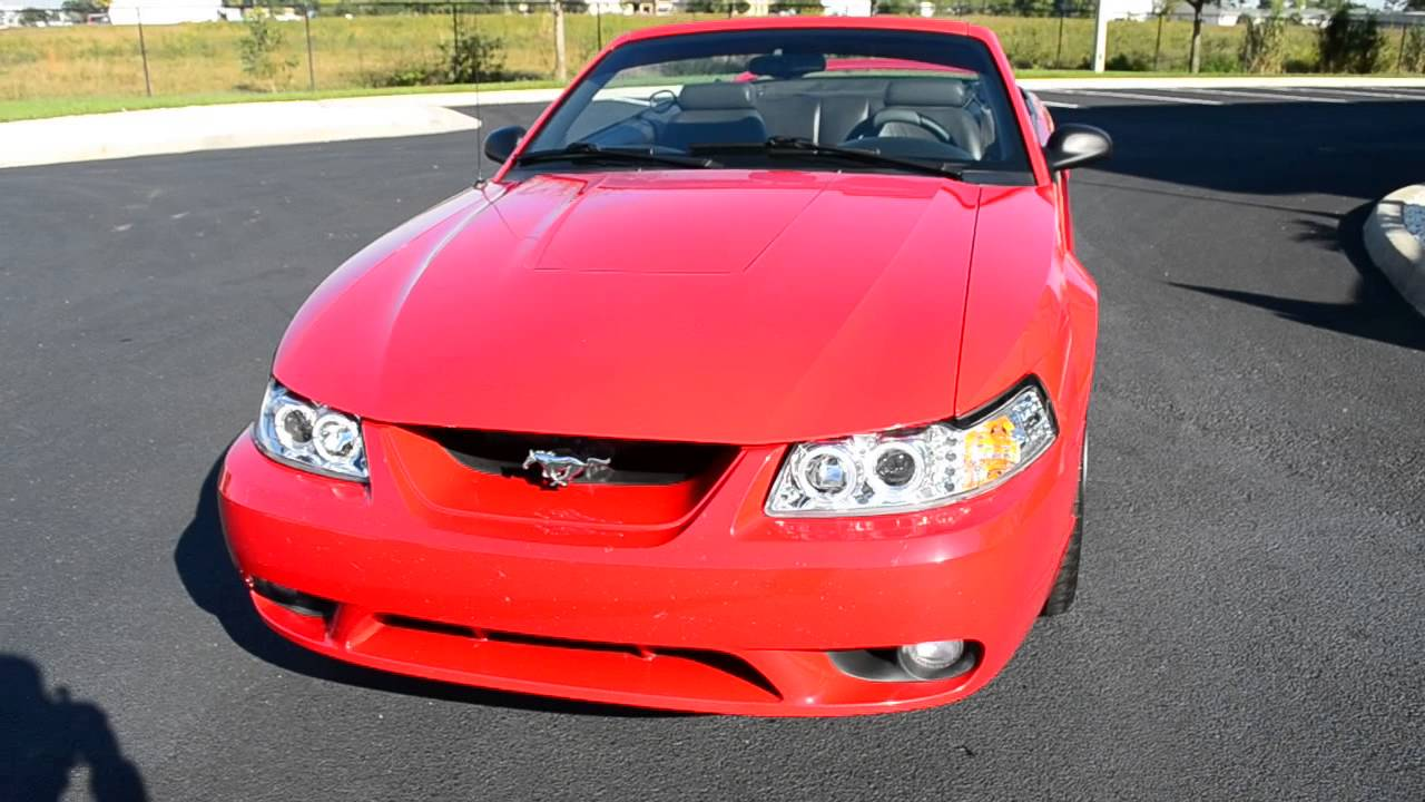 1999 Ford Mustang SVT Cobra for sale at Blue Marlin Motors USA