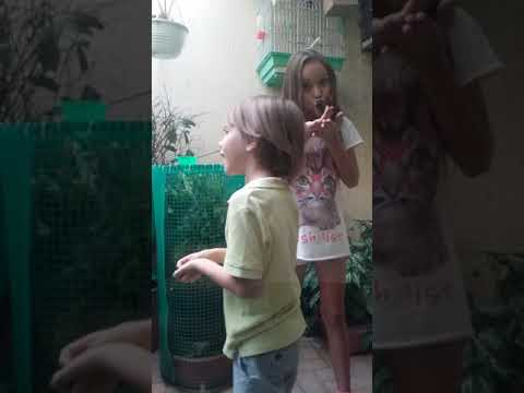 Sophia and Daniel Merizalde playing with parrots