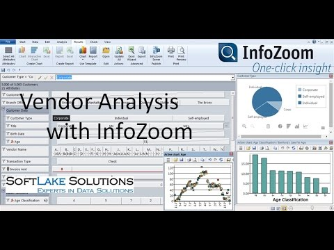 Audit Data Analytics Using Infozoom, Top 10 Vendor Analysis - Youtube