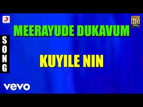 Meerayude Dukavum - Kuyile Nin Malayalam Song | Prithviraj, Ambili Devi, Renuka Menon
