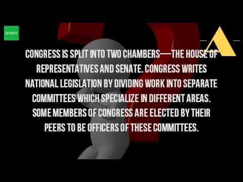 What Is The Difference Between The Congress And The Senate?