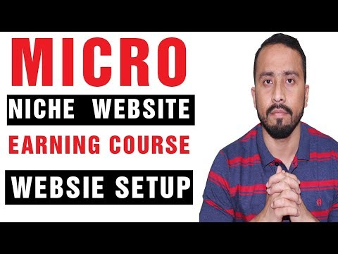 How To Earn Money From Micro Niche Website Domain and site Setup