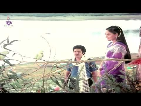 Nee Toli Chopulone Video Song || Nippulanti Manishi || Balakrishna, Radha