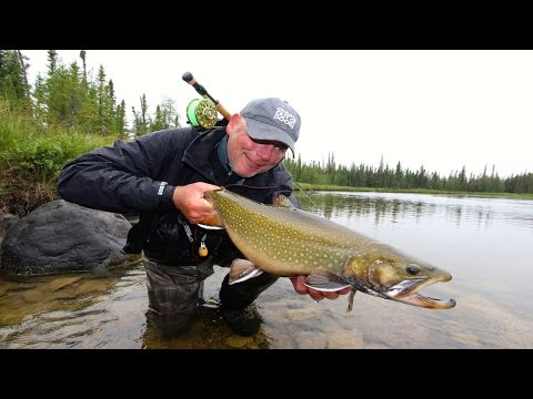Fishing The Sutton River - Giant Brookies On The Fly!