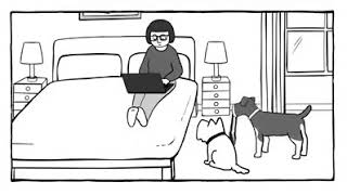 Very Funny Dog and Girl intelligence.