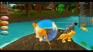 Schauspielerei wie Simba, Roblox Lion Rollenspiel