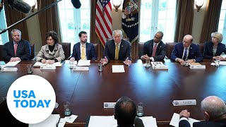 President Donald Trump holds a cabinet meeting | USA TODAY