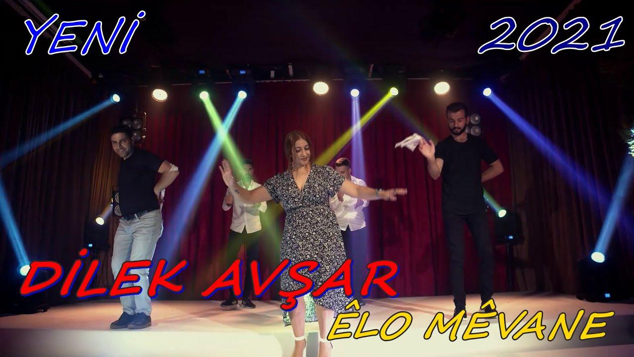 Dilek Avşar - Êlo Mêvane  2021 ( Official Müzik Video )