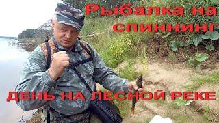 Рыбалка на спиннинг День на лесной реке Рыбалка в Вологодской области