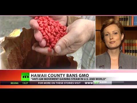 GMO-Free Hawaii: 'Big Island' bans biotech companies