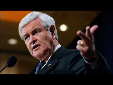 Gingrich on the Media's Reaction to 'Send Her Back' Chants