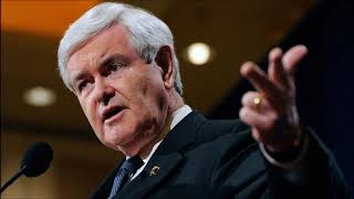 Conservative Citizen Gingrich on the Media's Reaction to 'Send Her Back' Chants