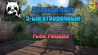 Дневной лайт 5 ый отборочный Максималка Ряпушка Стрим русская рыбалка 4