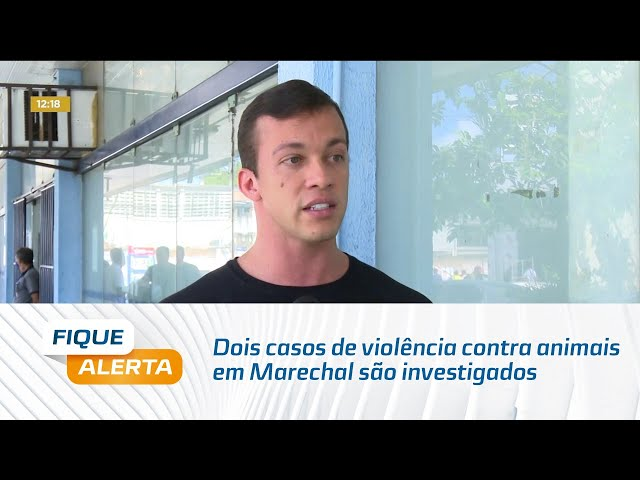 Dois casos de violência contra animais em Marechal são investigados pela Polícia Civil