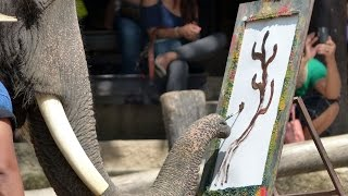 Incredible Intricate Paintings By Elephants