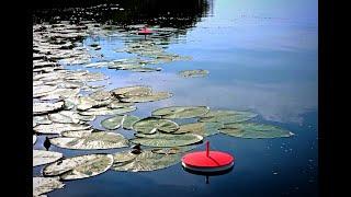 Рыбалка на КРУЖКИ летние жерлицы кружки на щуку