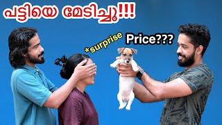 60,000/- രൂപയുടെ പട്ടിയും ആയി വീട്ടിൽ ചെന്നപ്പോൾ!! | Bought New Pet Dog | Surprised Everyone
